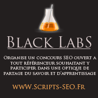 Concours SEO 2013